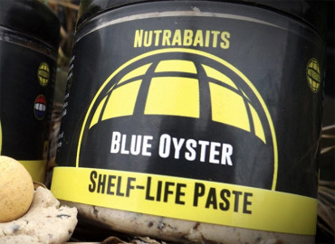 Blue Oyster Shelf Life Paste